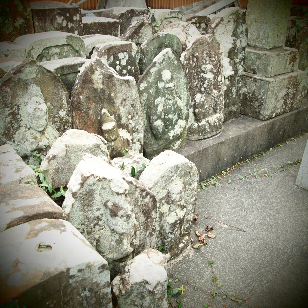 20090823墓参り2
