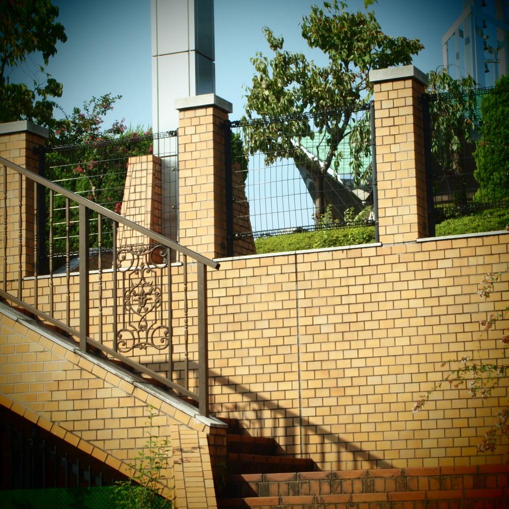 20090823常盤公園2