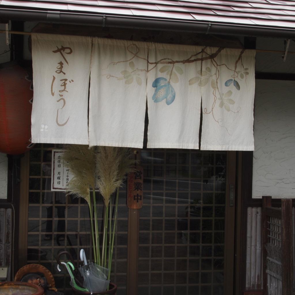 20090815やまぼうし3