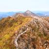 鮮やかな冬の山道