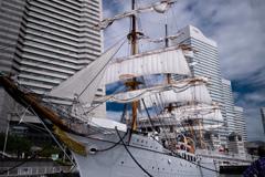 総帆展帆 日本丸