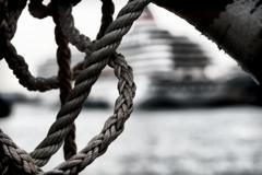 ロープ越しに望む客船