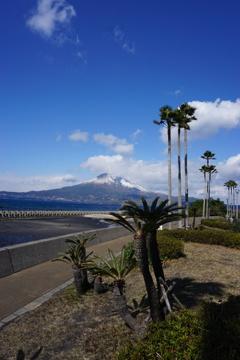 雪化粧の桜島 ー荒崎パーキングにてー