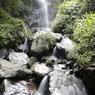 八反滝(澤より)