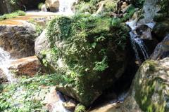 瀧ヤ谷渓谷で見つけたハート