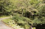 大虫滝遊園地