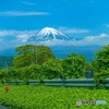 行列のできるGWの富士山