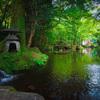 夏の緑(岐阜公園)