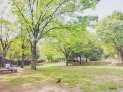 昼休みの公園