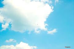 パラグライダーを撮ってみました