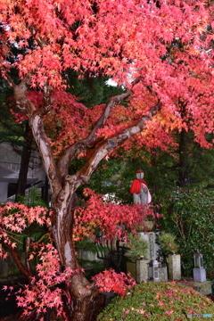 和歌山県高野山の紅葉⑤