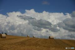 牧草ロールと湧き上がる雲