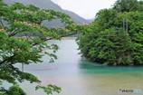 ダム湖と吊り橋2