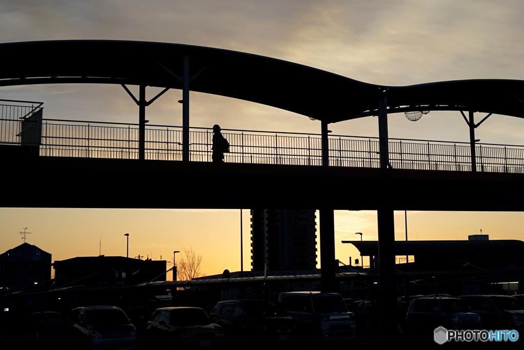 冬 朝日と陸橋2