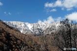 紅葉と冠雪2