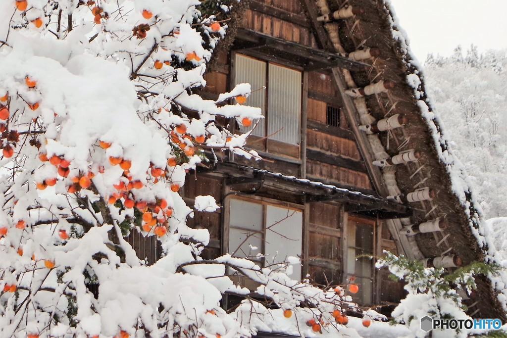 白川郷冬の始まり2