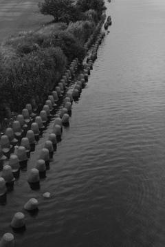 第二京浜 多摩川