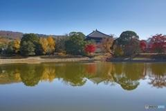 秋の大仏池より