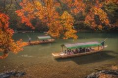 京都 - 嵐山  紅葉