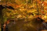 琥珀色の天然水✨