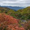 秋の二重の色づき