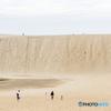 日本の砂漠 鳥取砂丘