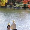 日本庭園の秋 5