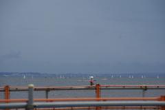 ヨットが浮ぶ江ノ島の海