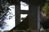 首都高速道路の橋脚