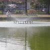 噴水と釣り人