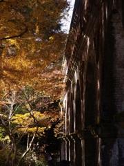 晩秋の水路閣
