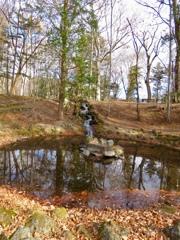 長倉神社の池