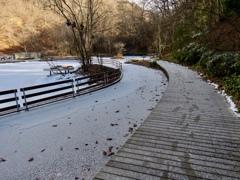 ケラ池と遊歩道