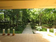 軽井沢高原教会へ続く道