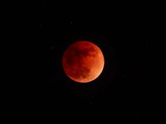 皆既月食 2018.01.31