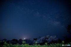 流れ星を見た夜