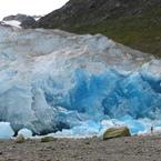 CANON Canon PowerShot Pro1で撮影した(リード氷河)の写真(画像)
