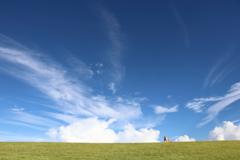 空は広いね!