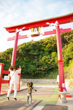 日本一入れるのが難しい賽銭箱