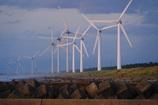 浜に連なる風車