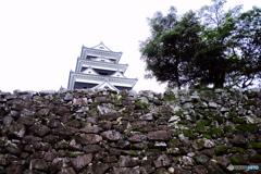 愛媛県 大洲城 D