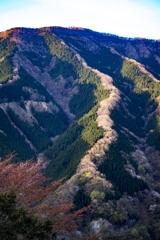 天に昇る龍・ ナメゴ谷にて^^