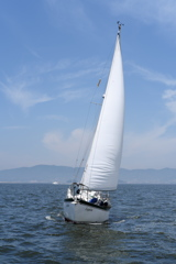 Sailing in Mikawa Bay2