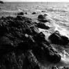 北風吹く西浦の岬