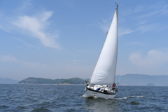 Sailing in Mikawa Bay