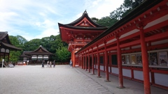 京都の世界遺産。