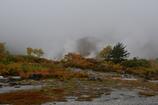 玉川温泉。