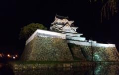 夜の岸和田城。