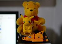 PANASONIC DMC-GX7MK2で撮影した(黄色)の写真(画像)