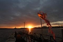 夕日と鯉のぼり2